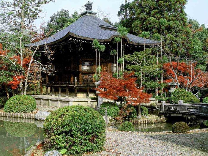 Красоты Японии (14 фото)
