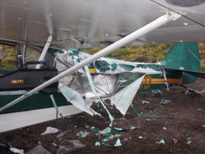 Нападение медведя на самолет (6 фото)