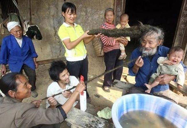 Приколы из Азии (140 фото)