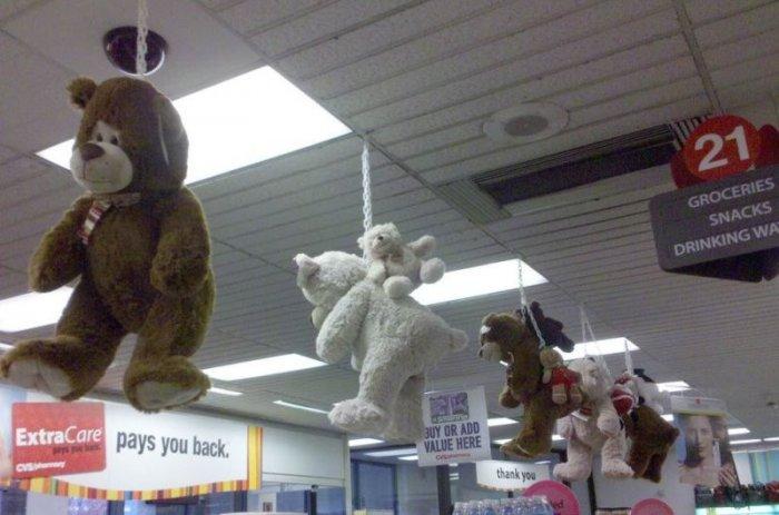 Бедные мишки (2 фото)