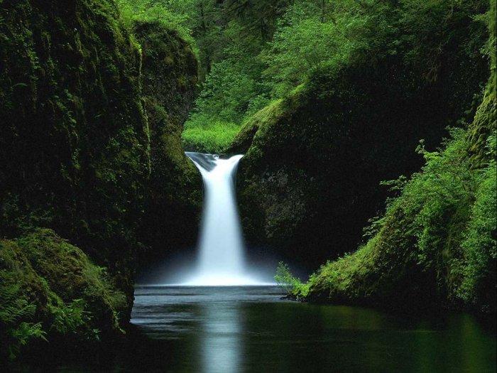 Красивейшие фотографии природы! (7 фото)