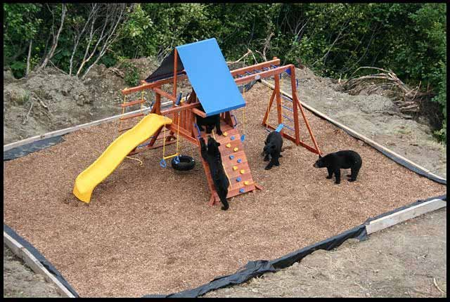 Детишки резвятся (4 фото)