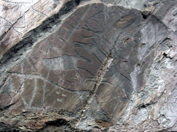 Наскальные рисунки на берегу реки Томь (11 фото)