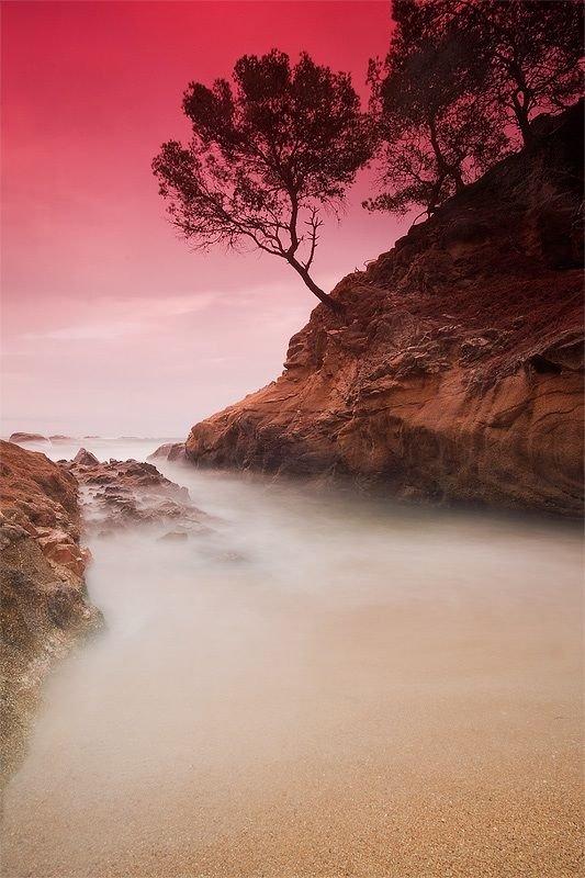 Красивые фотографии природы (47 фото)