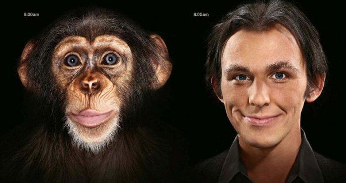 Эволюция (50 фото)