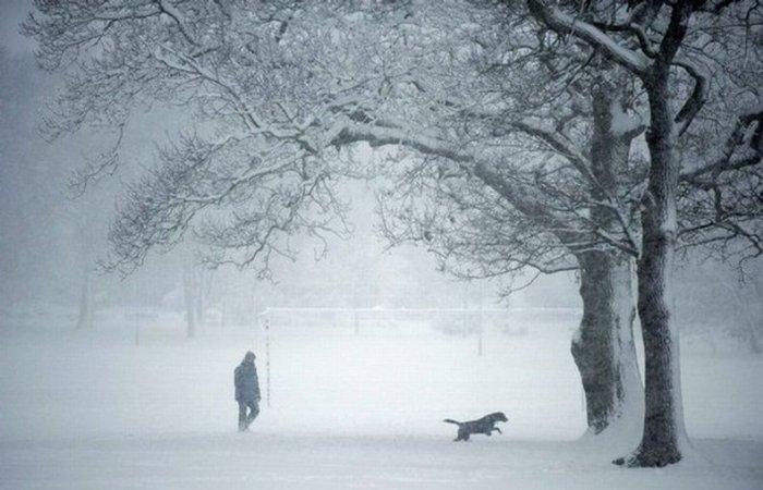 Лондон засыпало снегом (58 фото)