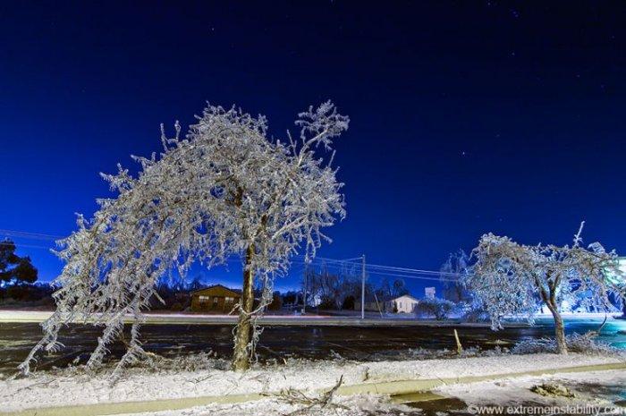 Ледяной дождь (48 фото)