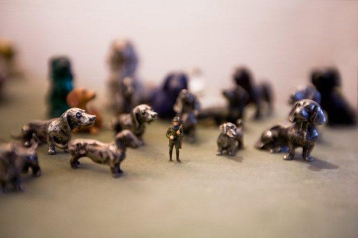 Жизнь в миниатюре (91 фото)