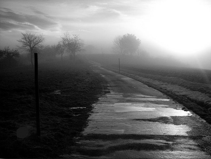 Дороги (15 фото)