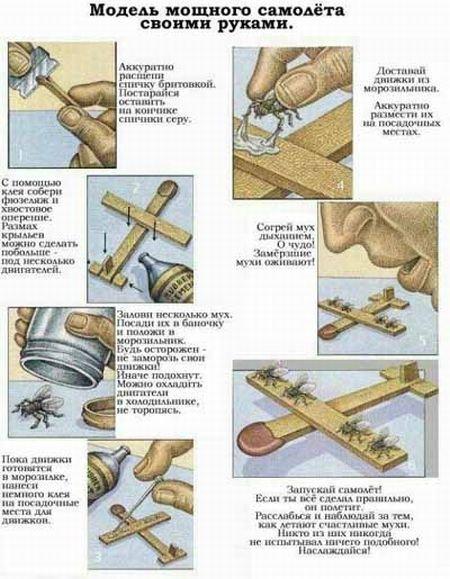 Самолет с мухами (12 фото)