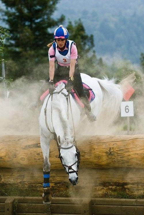 Падение с лошади (6 фото)