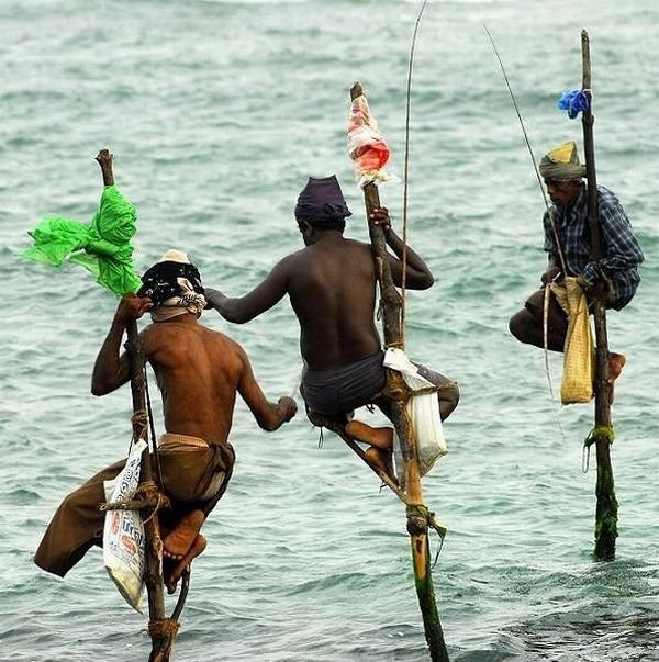 Оригинальный способ рыбалки (7 фото)