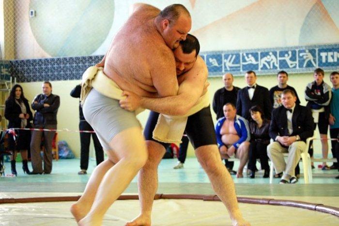 Сумо в России (28 фото)