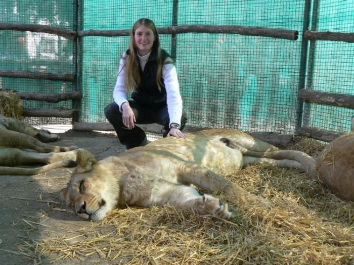 Зоопарк для любителей острых ощущений (38 фото)