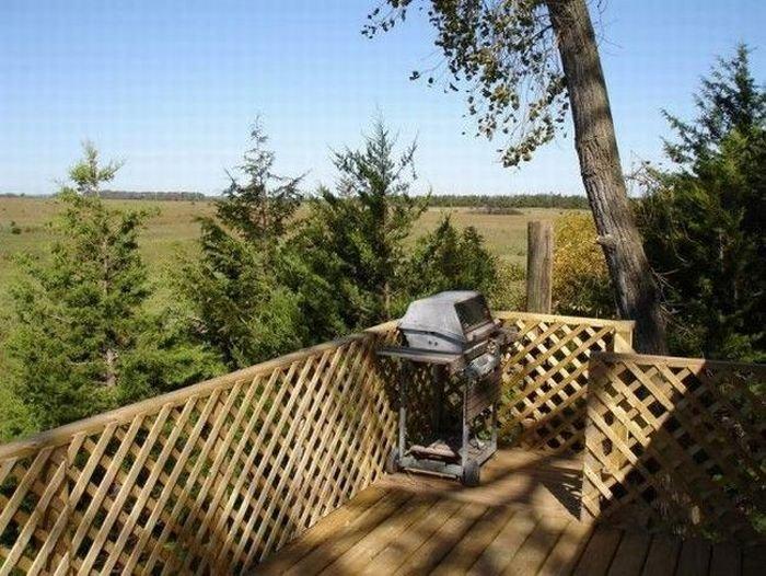 Домик на дереве (10 фото)