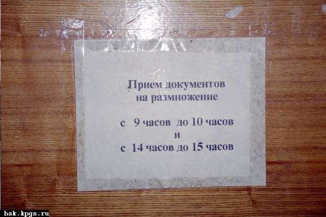 Подборка свежих маразмов (58 фото)