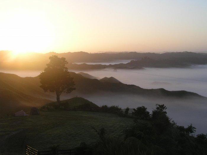 Утренний туман (14 фото)