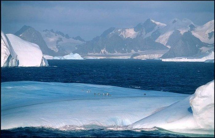 Антарктида (29 фото)