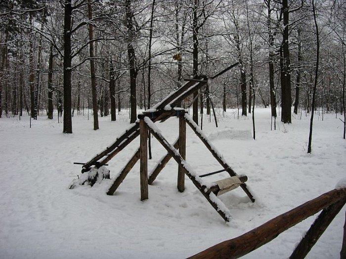 Спортзал в лесу (19 фото)