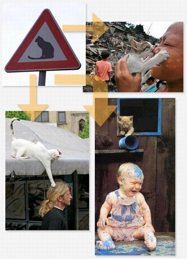 Значение некоторых знаков (14 фото)