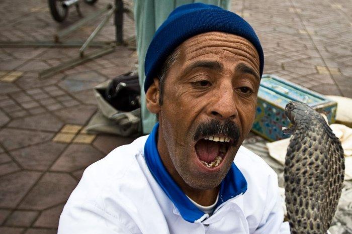 Заклинатели змей в Марокко (8 фото)