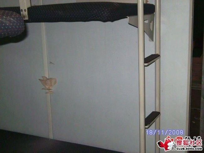 Что растет в китайском поезде (5 фото)