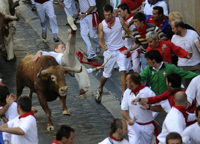 С быком шутки плохи (6 фото)