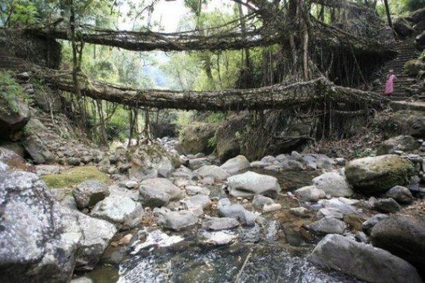 Природные мосты (8 фото)