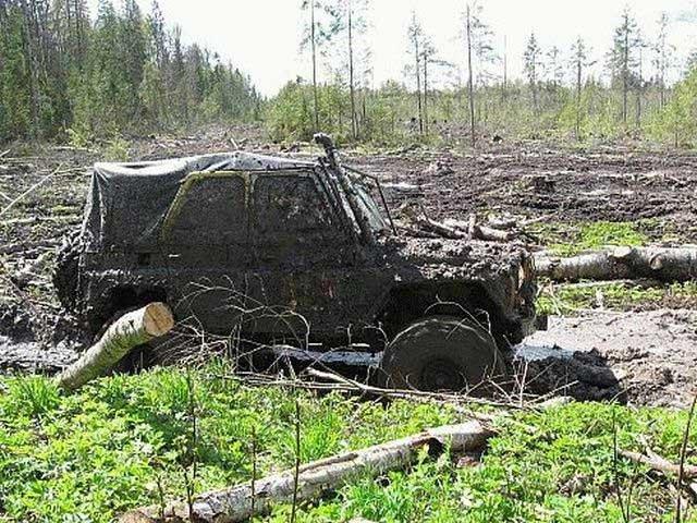 Такое может быть только в России (65 фото)