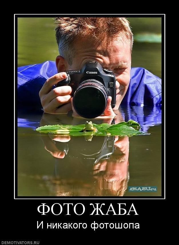 Свежие картинки с подписями (40 фото)