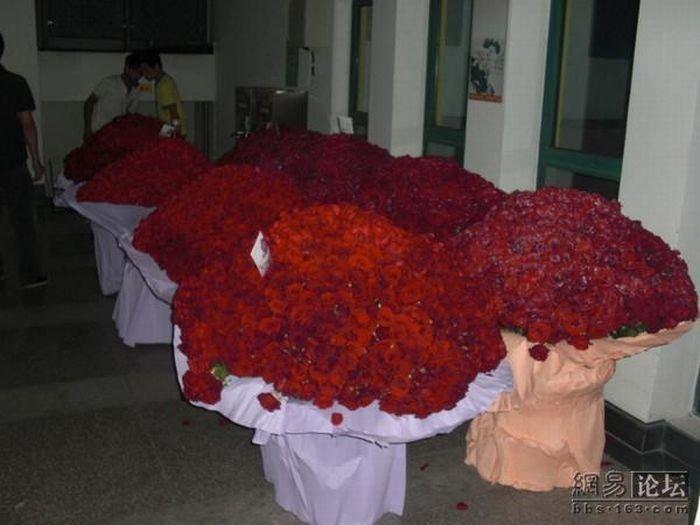 Десять тысяч роз (8 фото)