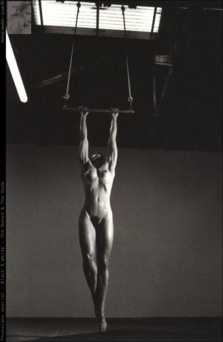 Работы Хельмута Ньютона (37 фото)