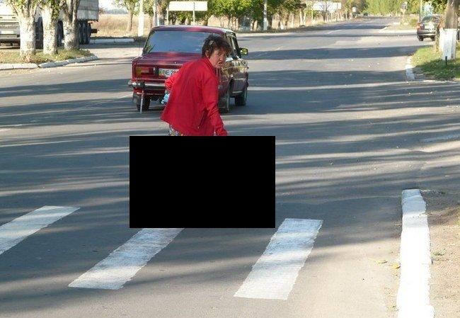 Выгул (4 фото)