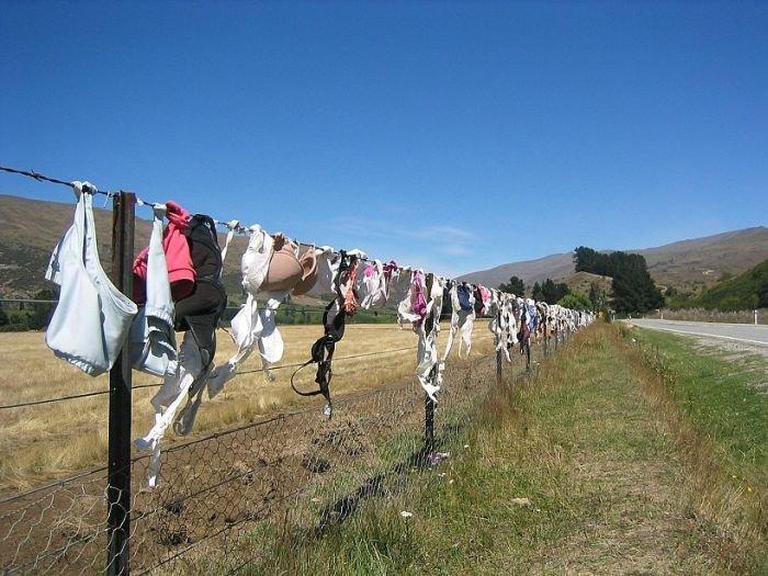 Лифчиковый забор (9 фото)
