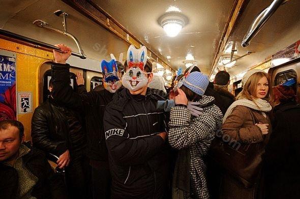 Зайцы в метро (7 фото)