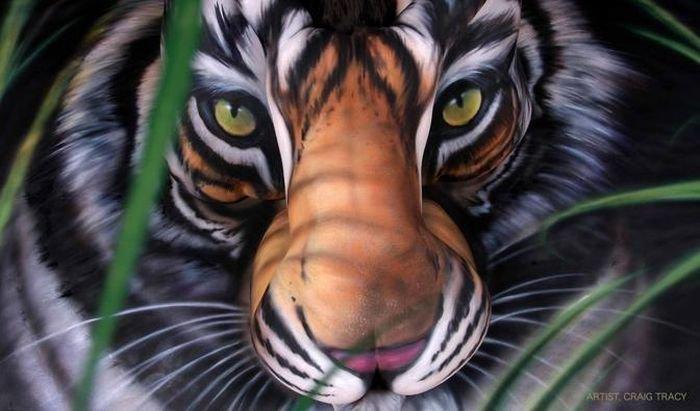 Бодиарт в виде тигра (6 фото)