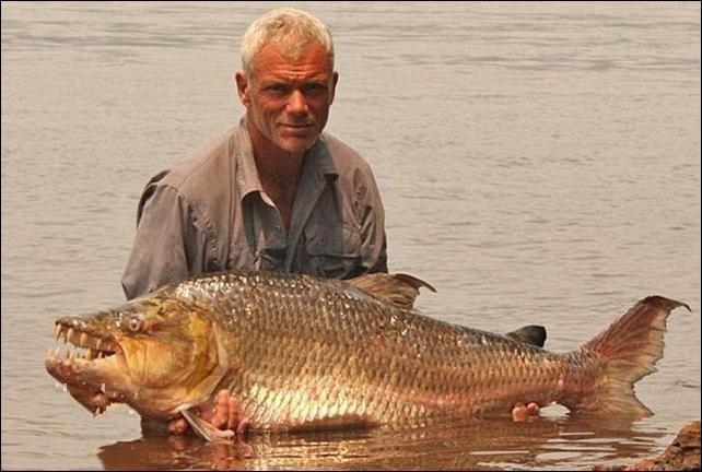 Адская рыбка (6 фото)