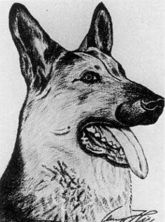 Рисунки и картины Адольфа Гитлера (15 фото)