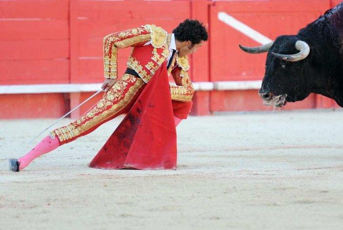 Поединок тореадора и быка (20 фото)