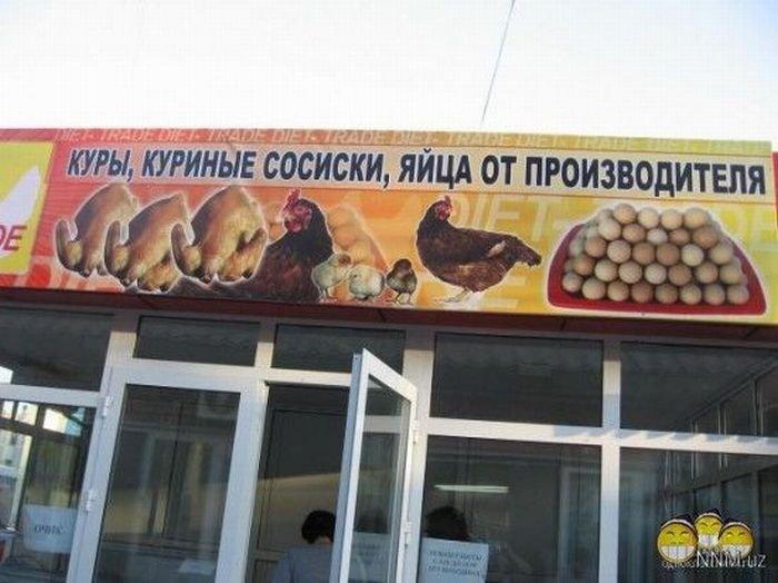 Объявления и вывески в Узбекистане (33 фото)