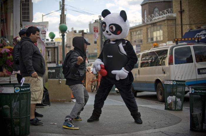 Ударь панду (12 фото)