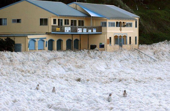 Пена на пляжах Австралии (15 фото)
