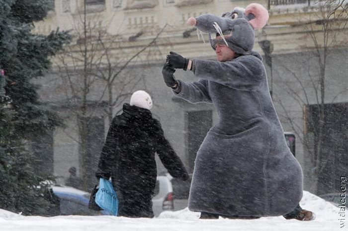 Костюмы крысы своими руками