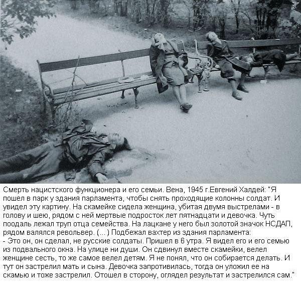 Снимки, которые потрясли мир (15 фото)