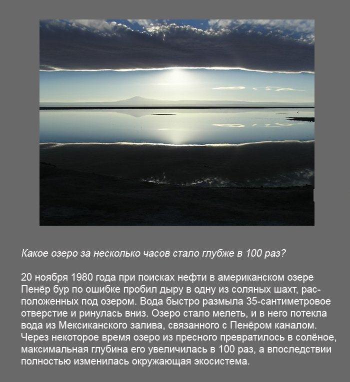 Подборка интересных фактов (35 фото)