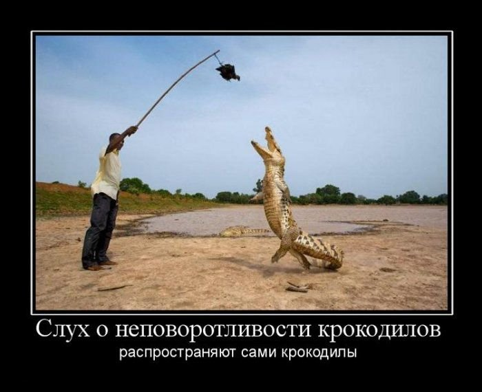 Картинки с подписями (139 фото)