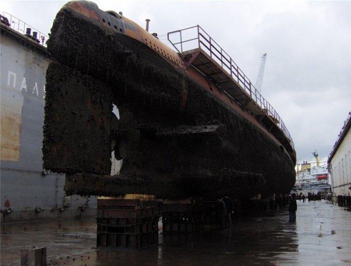 Украинский подводный флот (3 фото)