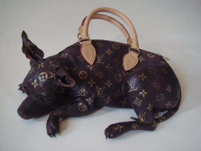 Странная сумочка (4 фото)