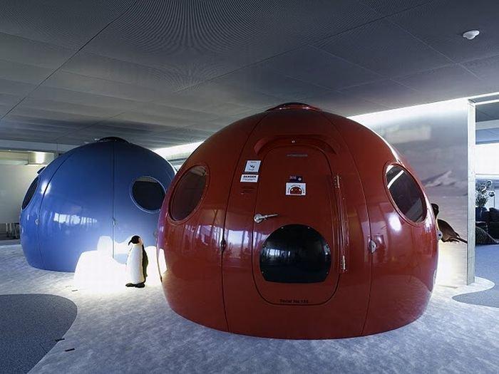 Новый офис Google в Цюрихе (68 фото)