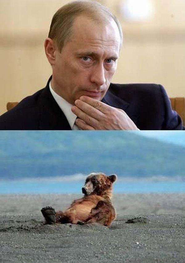 Привет, Путин! (9 фото)